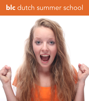 Intensive Dutch Courses Amsterdam / Drenthe